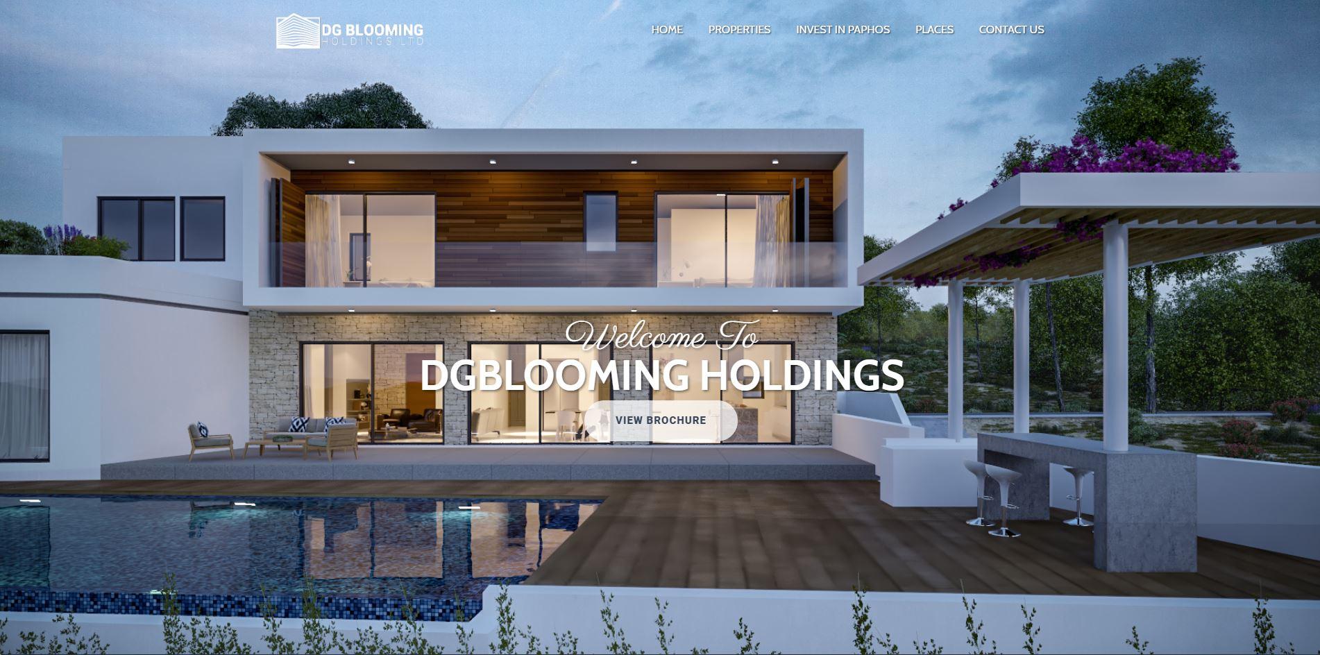 DGBLOOMING HOLDINGS - 1